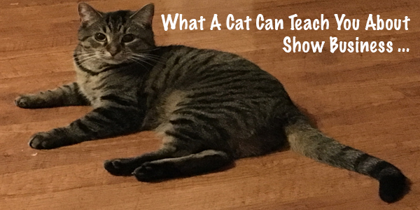 What A Cat Can Teach You About Show Business (Part 3)